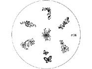 Plokštelė M36
